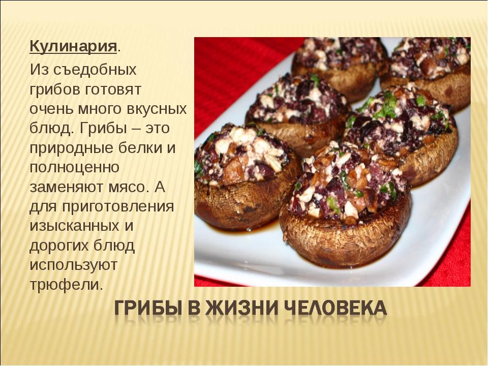 Рецепт по приготовлению вешенок грибов