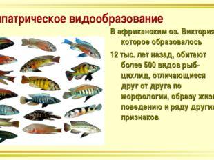 Симпатрическое видообразование В африканским оз. Виктория, которое образовало
