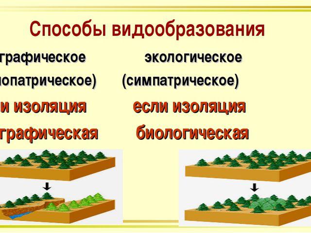 Способы видообразования географическое экологическое (аллопатрическое) (симпа...