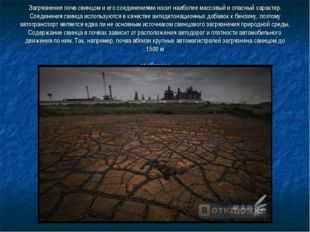 Загрязнение почв свинцом и его соединениями носит наиболее массовый и опасны