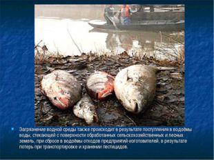 Загрязнение водной среды также происходит в результате поступления в водоёмы
