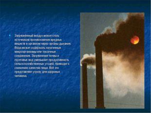 Загрязнённый воздух может стать источником проникновения вредных веществ в ор