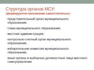 Структура органов МСУ: (формируются населением самостоятельно) представитель