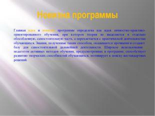 Новизна программы Главная идея и новизна программы определена как идея личнос