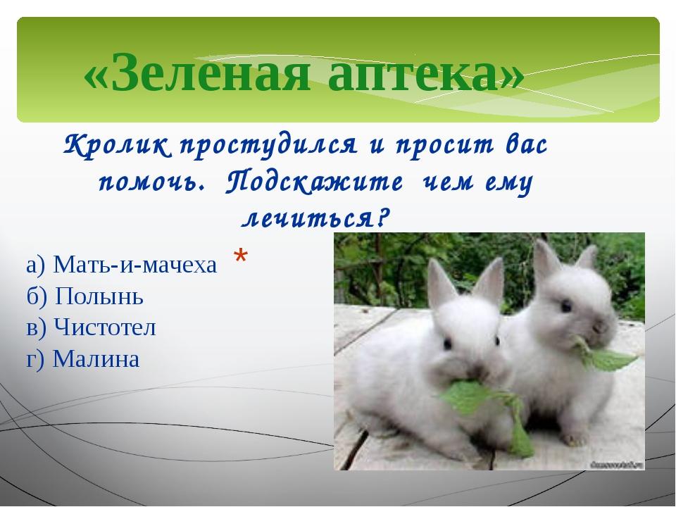 «Зеленая аптека» Кролик простудился и просит вас помочь. Подскажите чем ему л...