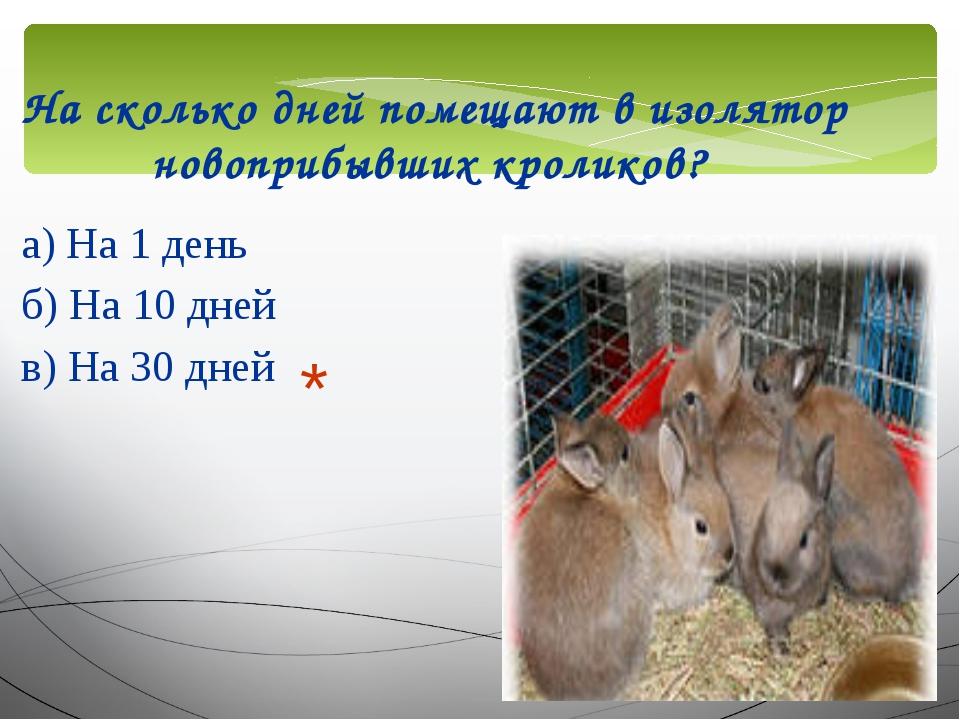 На сколько дней помещают в изолятор новоприбывших кроликов? а) На 1 день б) Н...