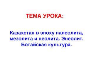 ТЕМА УРОКА: Казахстан в эпоху палеолита, мезолита и неолита. Энеолит. Ботайск