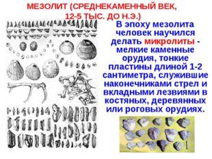 МЕЗОЛИТ (СРЕДНЕКАМЕННЫЙ ВЕК, 12-5 ТЫС. ДО Н.Э.) В эпоху мезолита человек науч