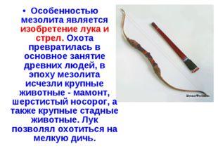 Особенностью мезолита является изобретение лука и стрел. Охота превратилась в
