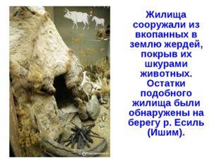 Жилища сооружали из вкопанных в землю жердей, покрыв их шкурами животных. Ос