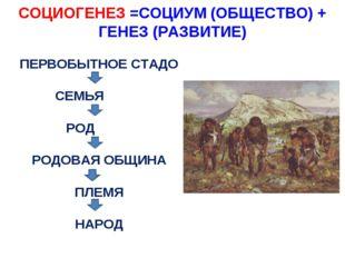 СОЦИОГЕНЕЗ =СОЦИУМ (ОБЩЕСТВО) + ГЕНЕЗ (РАЗВИТИЕ) ПЕРВОБЫТНОЕ СТАДО СЕМЬЯ РОД