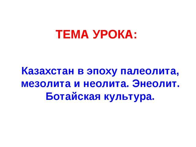 ТЕМА УРОКА: Казахстан в эпоху палеолита, мезолита и неолита. Энеолит. Ботайск...