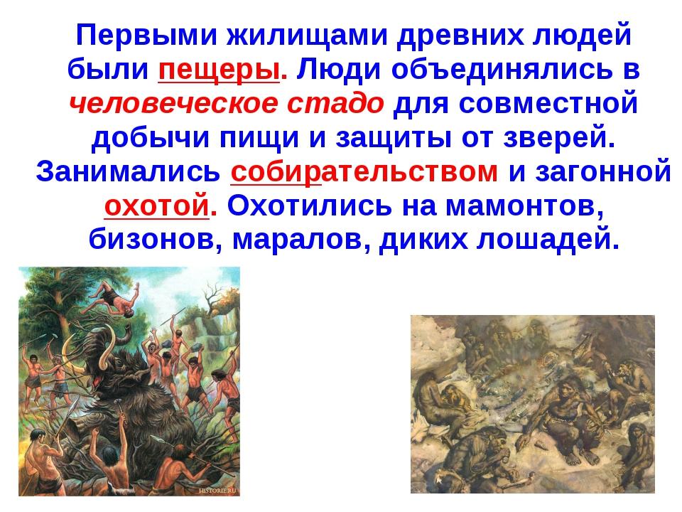 Первыми жилищами древних людей были пещеры. Люди объединялись в человеческое...