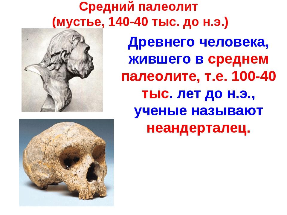 Средний палеолит (мустье, 140-40 тыс. до н.э.) Древнего человека, жившего в с...
