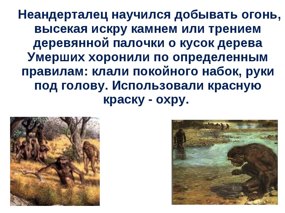 Неандерталец научился добывать огонь, высекая искру камнем или трением дерев...