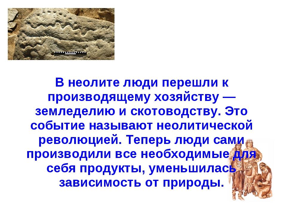 В неолите люди перешли к производящему хозяйству — земледелию и скотоводству...