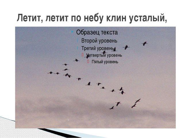 Летит, летит по небу клин усталый,