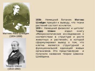 1838г. Немецкий ботаник Маттиас Шлейден пришёл к выводу, что ткани растений с