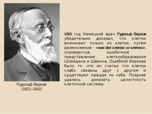 1855 год Немецкий врач Рудольф Вирхов убедительно доказал, что клетки возника