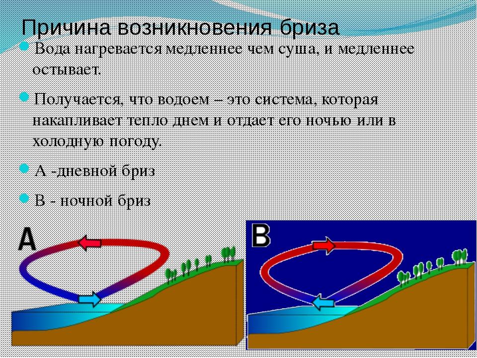 Причина возникновения бриза Вода нагревается медленнее чем суша, и медленнее...