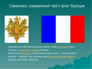 Современный герб Франции представляет собой ликторский пучок с топором и с ла