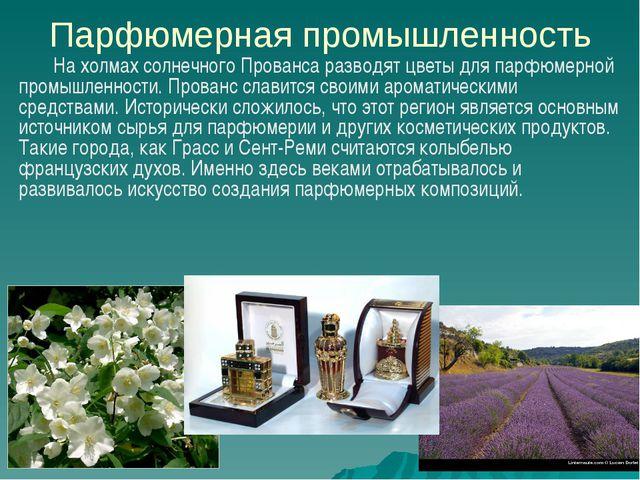 Парфюмерная промышленность На холмах солнечного Прованса разводят цветы для п...