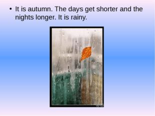 It is autumn. The days get shorter and the nights longer. It is rainy.