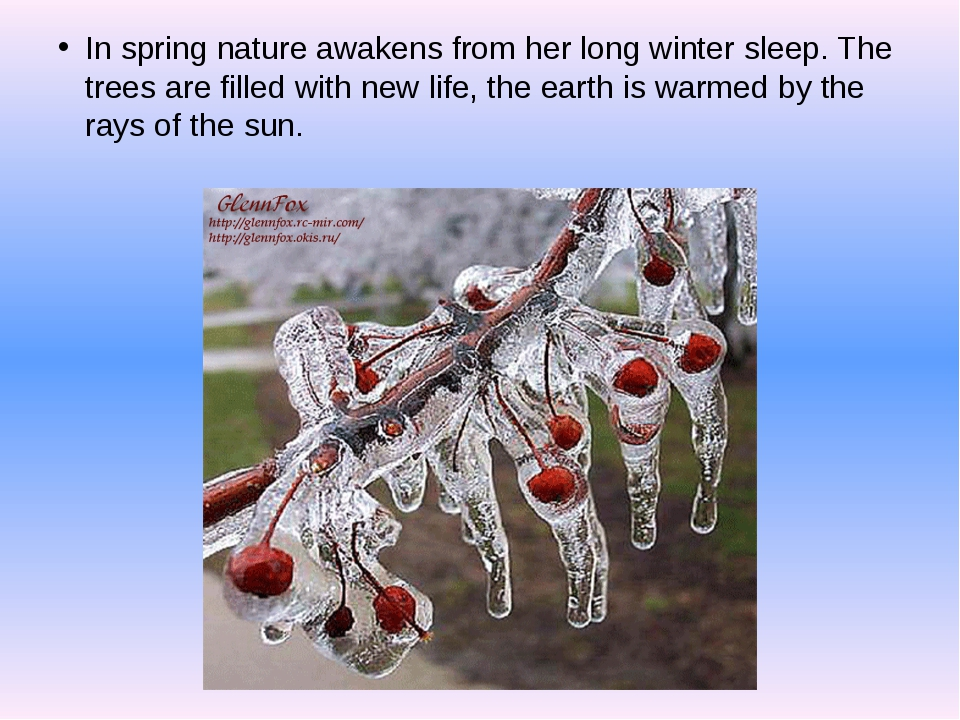In spring nature awakens from her long winter sleep. The trees are filled wi...
