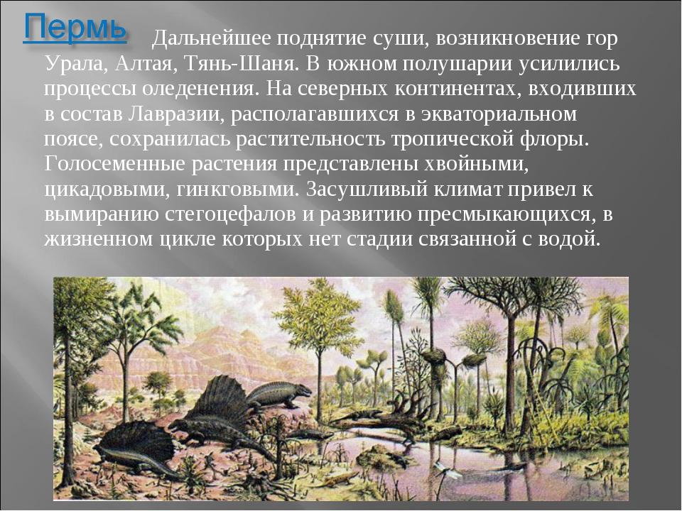 Дальнейшее поднятие суши, возникновение гор Урала, Алтая, Тянь-Шаня. В южном...