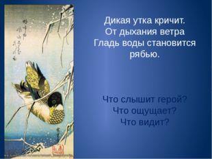 Дикая утка кричит. От дыхания ветра Гладь воды становится рябью. Что слышит г