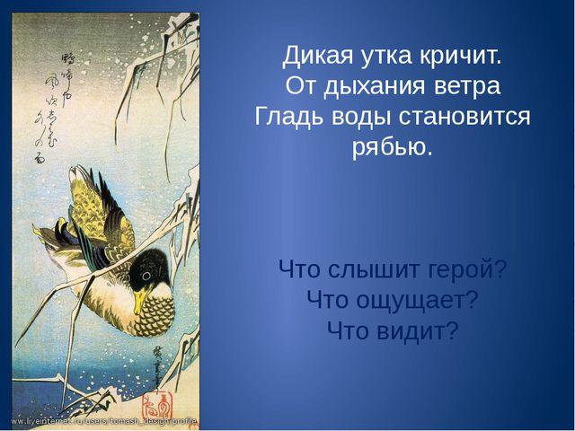 Дикая утка кричит. От дыхания ветра Гладь воды становится рябью. Что слышит г...