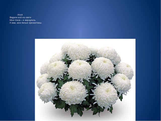 Иссё Видели всё на свете Мои глаза – и вернулись К вам, мои белые хризантемы.
