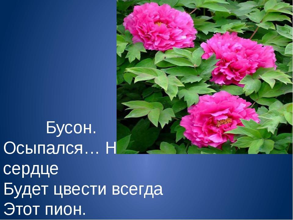 Бусон. Осыпался… Но в сердце Будет цвести всегда Этот пион.