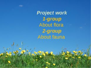 Project work 1-group About flora 2-group About fauna