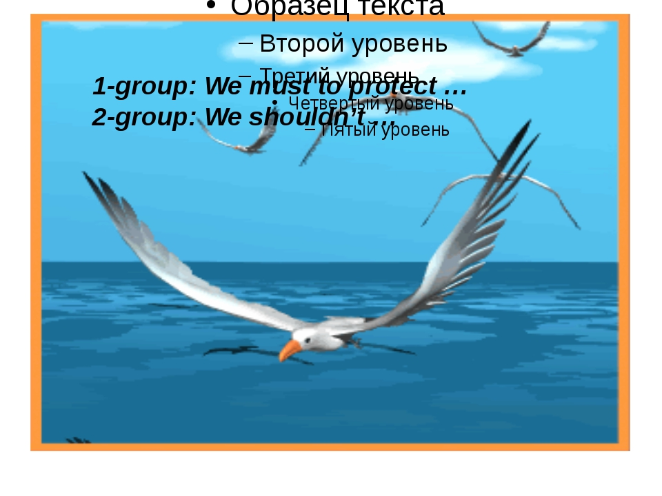 1-group: We must to protect … 2-group: We shouldn't …