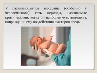 У развивающегося зародыша (особенно у человеческого) есть периоды, называемые