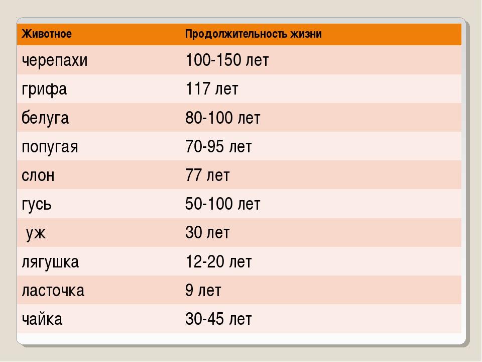 ЖивотноеПродолжительность жизни черепахи100-150 лет грифа 117 лет белуга8...
