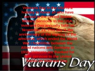 Veterans Day in the USA is a holiday to honor all who have served in the Unit