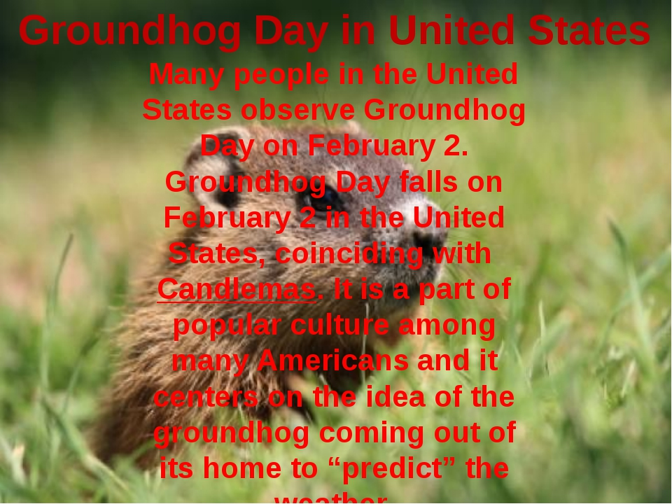 Groundhog Day in United States Many people in the United States observe Groun...