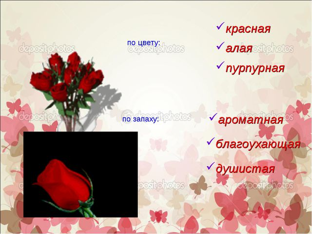 по цвету: красная по запаху: алая пурпурная ароматная благоухающая душистая