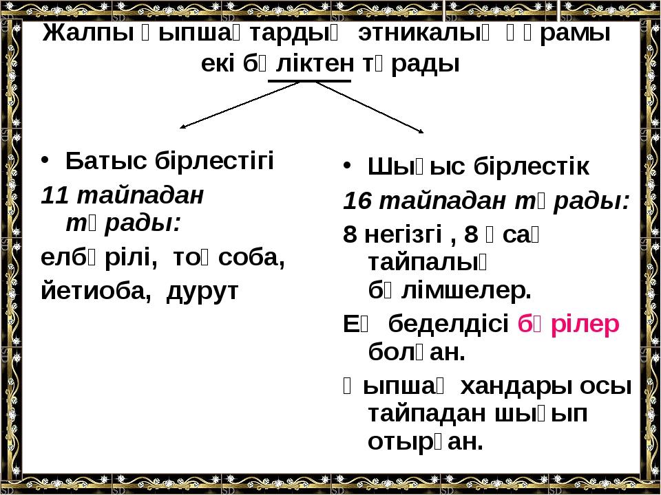 Жалпы қыпшақтардың этникалық құрамы екі бөліктен тұрады Батыс бірлестігі 11 т...