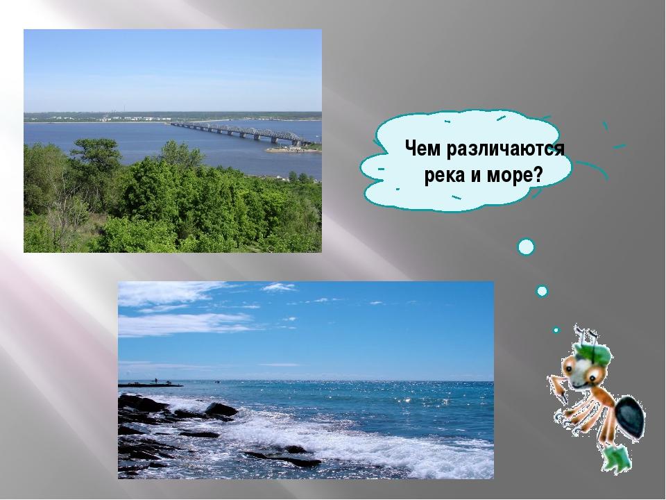 Чем различаются река и море?