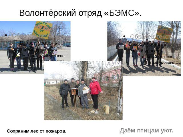 Волонтёрский отряд «БЭМС». Сохраним лес от пожаров. Даём птицам уют.