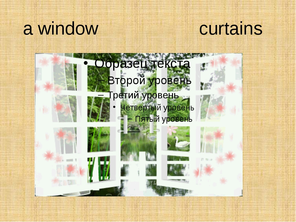 a window curtains