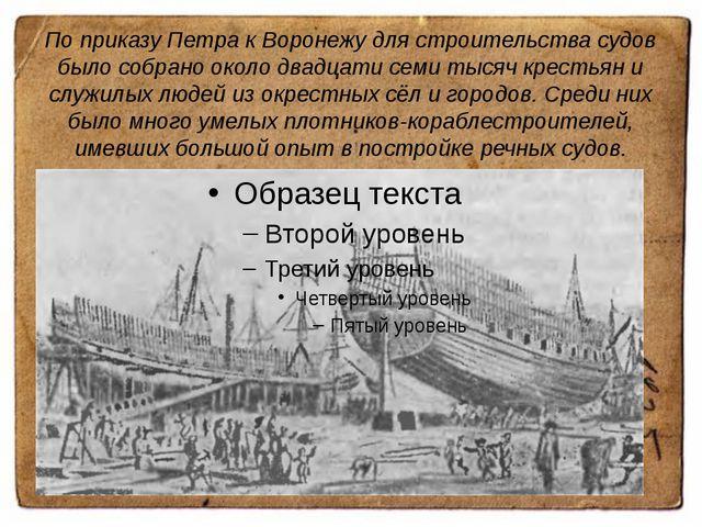 По приказу Петра к Воронежу для строительства судов было собрано около двадца...