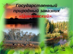 Государственный природный заказник «Цимлянский».