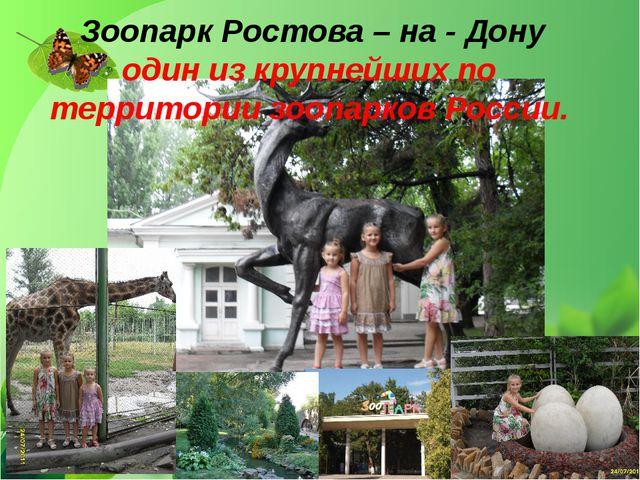 Зоопарк Ростова – на - Дону один из крупнейших по территории зоопарков России.