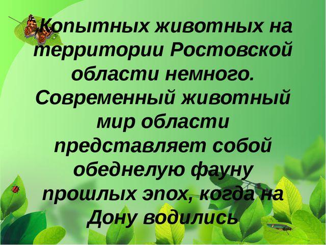 Копытных животных на территории Ростовской области немного. Современный живо...