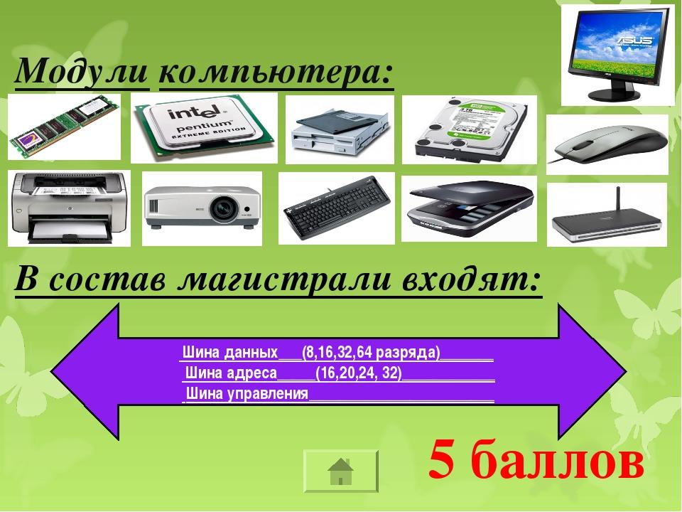 5 баллов Модули компьютера: В состав магистрали входят: Шина данных___(8,16,3...