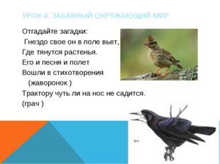 УРОК 4. ЗАБАВНЫЙ ОКРУЖАЮЩИЙ МИР Отгадайте загадки: Гнездо свое он в поле вьет